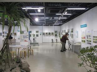 小笠原諸島の自然の画像 p1_2