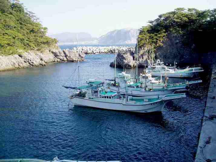 小浜漁港・港から見える風景|☆東京都大島支庁ホームページ☆